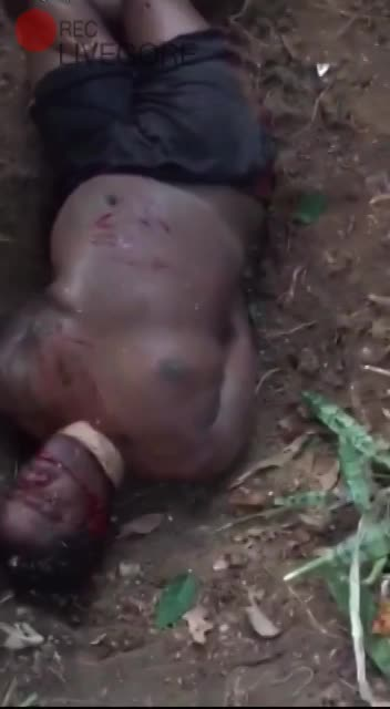 FULL VIDEO! Brazil Man Being Dismembered Alive - LiveGore com