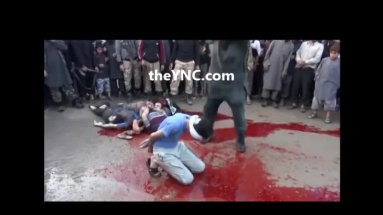 Best Of The Best Slaughtering Compilation - LiveGore.com